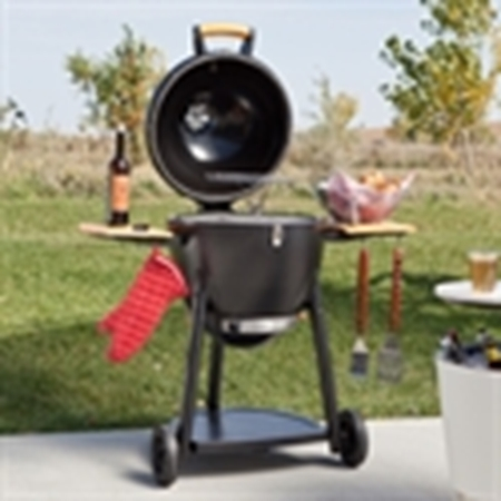 Picture for category Kamado
