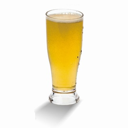Picture of Polycarbonate Giant Beer 12 oz. D7x16.4 cm. (GC226-8534)
